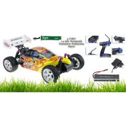 1/10th Scale Electric Powered Off Road Buggy RTR